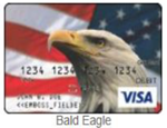 Bald Eagle Gift card