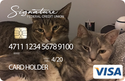 Create a card example image of two cats hanging out together.